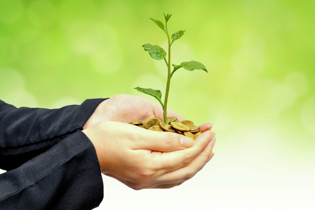 use green business practices to grow your company