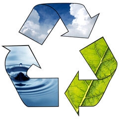 Reduce, Reuse and Recycle Your Way to Lower Overhead