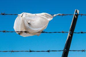 eliminate single-use plastics